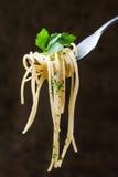 Espaguetis en una bifurcación Foto de archivo libre de regalías