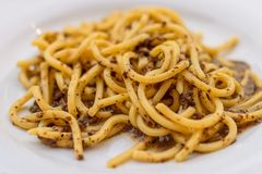 Espaguetis Spaghettoni con las setas Plato italiano tradicional imagen de archivo