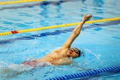 Espalda masculina de la natación del nadador en piscina Fotos de archivo libres de regalías