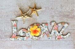 Espalhe o amor e a paz em todo o mundo especialmente em feriados do dia de são valentim e do special Fotografia de Stock Royalty Free