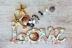 Espalhe o amor e a paz em todo o mundo especialmente em feriados do dia de são valentim e do special Imagens de Stock