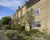 Espalier pear tree growing on Cotswold House Royalty Free Stock Photography