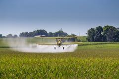 Espanador amarelo da colheita