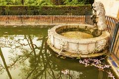 Espanha de Lion Pool Alcazar Royal Palace Sevilha Imagem de Stock