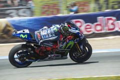 Espanha de MotoGP, em Jerez Fotos de Stock Royalty Free