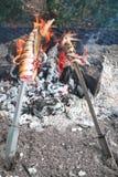 Espanha, Nerja, calamar grelhado sobre o carvão vegetal fotografia de stock