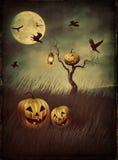 Espantalho da abóbora nos campos na noite com olhar do vintage Foto de Stock