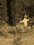 Espantapájaros Fotografía de archivo libre de regalías