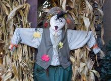 Espantapájaros con los tallos del maíz Foto de archivo libre de regalías