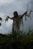 Espantapájaros del horror Imagenes de archivo