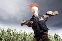 Espantapájaros en campo de maíz en un día nublado Imagenes de archivo