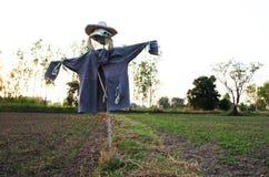 Espantapájaros en granja Fotos de archivo libres de regalías