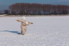 Espantapájaros en un campo nevoso imagenes de archivo