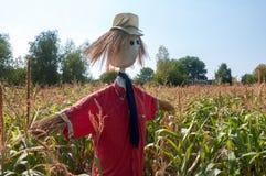 Espantapájaros viejo en un campo de maíz, hecho paja de la forma y ropa Imagen de archivo