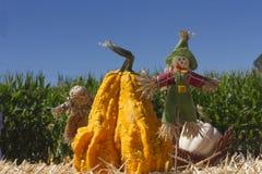 Espantapájaros y calabaza decorativa con maíz verde azul y el cielo azul Foto de archivo