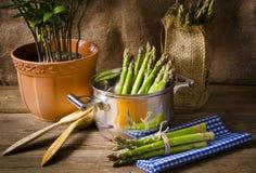 Espargos verdes Imagem de Stock Royalty Free