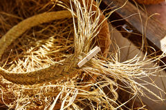Esparto halfah grass used for crafts basketry Stock Photo