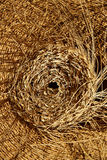 Esparto halfah grass used for crafts basketry Royalty Free Stock Photos