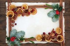 Especia de la fruta de la Navidad y frontera floral Foto de archivo