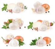 Especia del ajo y del alimento en blanco imagen de archivo