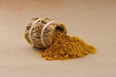 Especia del curry Foto de archivo libre de regalías