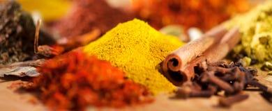 especia Diversas especias indias y fondo colorido de las hierbas Surtido de condimentos foto de archivo
