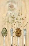 Especia en las cucharas de plata en fondo de madera Foto de archivo libre de regalías