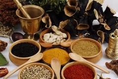 Especia - grano - aroma Foto de archivo