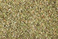 Especia secada como fondo, textura natural del orégano del condimento imagen de archivo