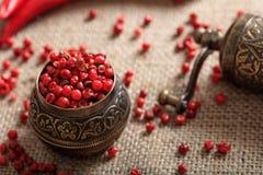 Especia secada de la pimienta roja imagenes de archivo