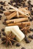 Especia y chocolate Imagenes de archivo