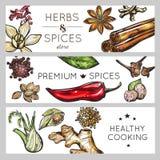 Especia y Herb Banner Set Imagen de archivo libre de regalías
