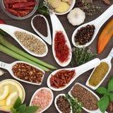 Especia y Herb Seasoning culinarios imagen de archivo