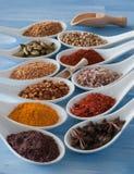 Especia y semillas de la variedad en las cucharas de cerámica blancas Imágenes de archivo libres de regalías