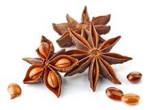 Especia y semillas del anís de estrella Fotografía de archivo libre de regalías