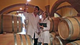 Especialistas que comprueban la fermentación del vino almacen de video