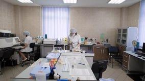 Especialistas que trabalham no laboratório Fêmeas no uniforme branco que trabalha com análises no laboratório clínico filme