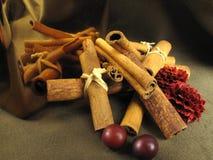 Especiaria da canela Fotografia de Stock