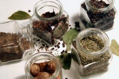 Especiaria da cozinha Imagem de Stock