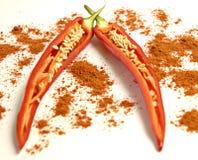 Especiaria das paprika Imagens de Stock Royalty Free