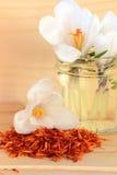 Especiaria do açafrão e açafrão da flor Foto de Stock Royalty Free