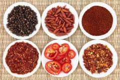 Especiaria do pimento Fotografia de Stock