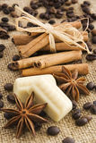 Especiaria e chocolate Imagens de Stock