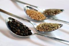 Especiaria e condimentos, fim acima da vista Fotografia de Stock