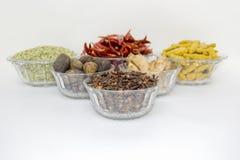 Especiaria indiana Foto de Stock Royalty Free