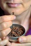 Especiaria secada mastigação do cravo-da-índia da mulher Foto de Stock Royalty Free