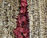 Especiarias & ervas Fotografia de Stock
