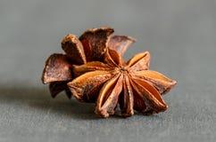 Especiarias; anis de estrela imagens de stock
