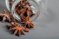 Especiarias, anis de estrela, cardamomo e coentro. Fotos de Stock