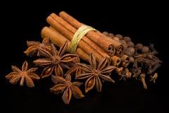 Especiarias: canela, anis de estrela e pimenta da Jamaica Fotografia de Stock
